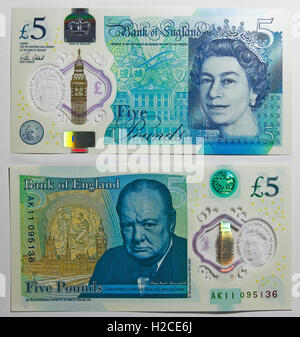 Polymer five pound note introduced in 2016, replacing the paper note. - Stock Photo