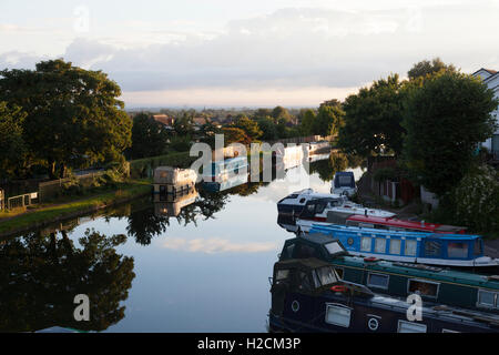 Early summer's morning on the Bridgewater Canal, Appleton, Cheshire - Stock Photo