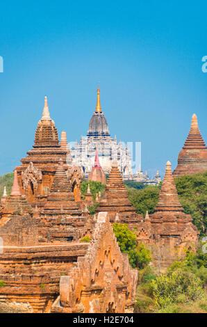 Temples, pagodas, Thatbyinnyu Paya Temple, That byin Nyu Temple, Bagan, Myanmar - Stock Photo