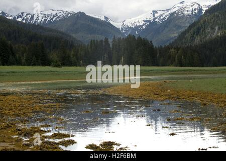 Juneau; Alaska; hiking; Thomas Bay; Safari Endeavour; hike; Petersburg; Scenery Cove; landscape; calm; calmly; calmness; - Stock Photo