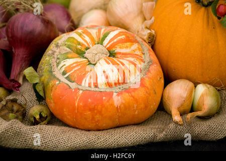 Harvest display, - Stock Photo