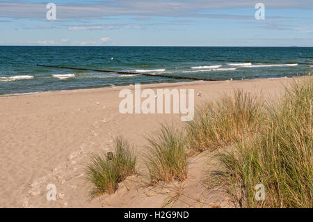 Sand dunes and beach at Zingst on the Baltic peninsular of Darss, Mecklenburg Western Pomerania, Germany. - Stock Photo