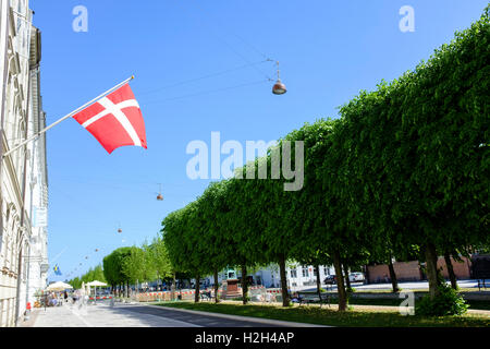 Danish flag against a blue sky with a dark green hedge. Copenhagen, Denmark - Stock Photo