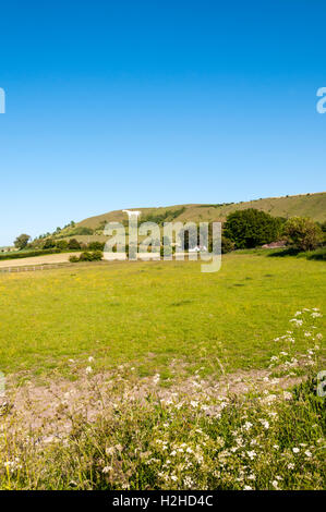 Westbury White Horse chalk figure in Wiltshire. - Stock Photo