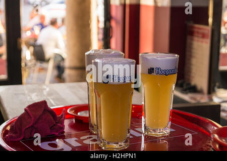 Three printed glasses of Hoegaarden Belgian wheat beer on a tray, Couleur Café bar, Place des Héros, Arras, Pas - Stock Photo