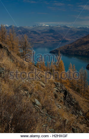 Kanas Lake Nature Reserve taken from a hillside in the park. Xinjiang Province China near the borders with Russia - Stock Photo