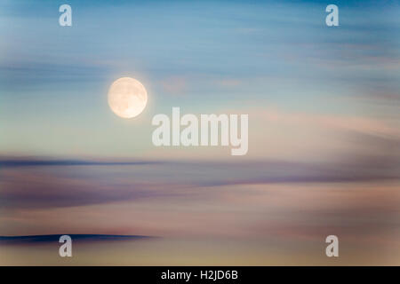 A summer moon rises, almost full, at twilight in Seattle, WA - Stock Photo