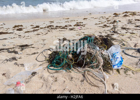 Plastic pollution from the sea on a beach - Stock Photo