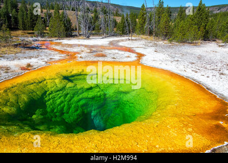 View of the Morning Glory Pool in Yellowstone National Park - Stock Photo