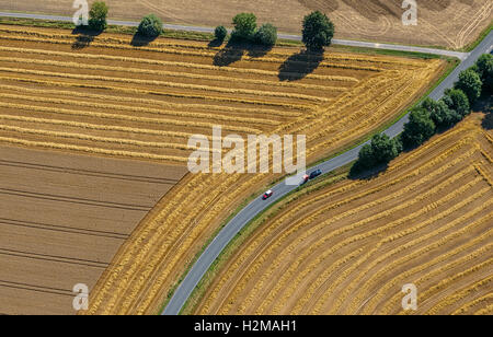 Aerial picture, road fork, road crossroad, harvested fields, country roads, curve, Welver, the Lower Rhine, - Stock Photo