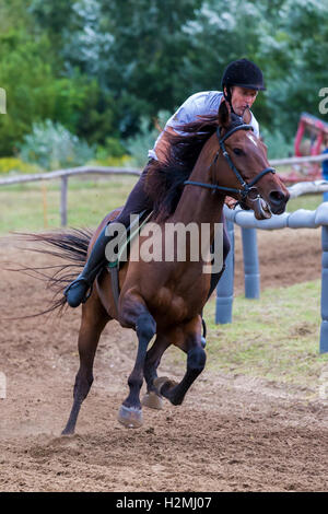 National horse gallop race from Hungary, (race Festetics, village Gyenesdias), village Gyenesdia, Hungary,21.august - Stock Photo