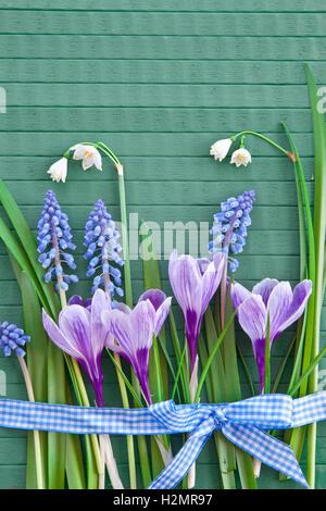 Fresh spring flowers - Stock Photo