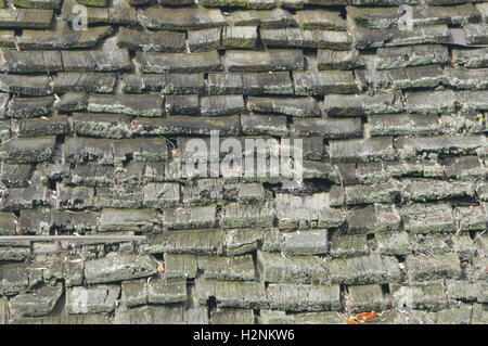 ... Moss Covered Wood Shingles Cover A Roof In Chesapeake City, Cecil  County, Maryland,