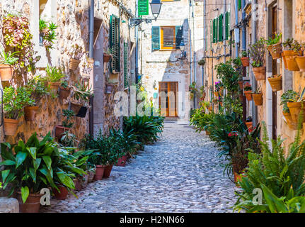 Plant Street in Valldemossa, Majorca - Stock Photo