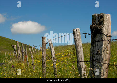 Fence in countryside, Region Auvergne, France, Europe - Stock Photo