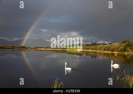 Lake Shanaghan, Ardara, County Donegal, Ireland weather. October 1st 2016. A rainbow is reflected in the lake as - Stock Photo