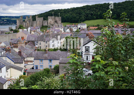 Conwy's medieval castle towers seen from the town wall, Conwy, North Wales, UK - Stock Photo