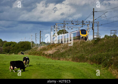 train cross-country voyager service   Adlington Manchester to Macclesfield line Transport transporter transportation - Stock Photo