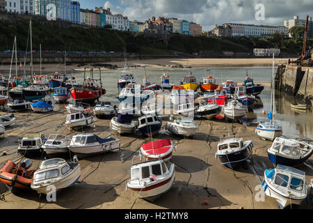 Fishing boats wait the incoming tide at Tenby harbour, Pembrokeshire, Wales, - Stock Photo