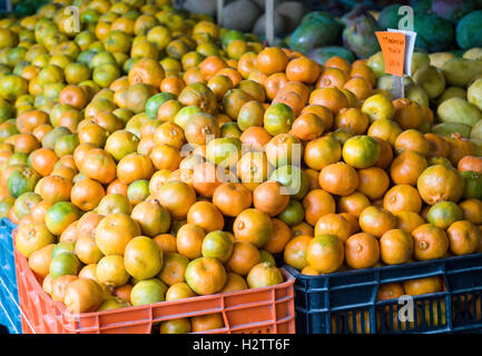 Mandarina -- Oranges on sale in a small fruiteria market. A display of unsprayed local oranges in a fruit market. - Stock Photo