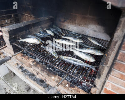 Salted Sardines Grilling on an Azorian BBQ. Large chunks of rock salt flavour fresh fish just after it is placed - Stock Photo