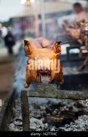 View at roasted pig on a spit - Stock Photo