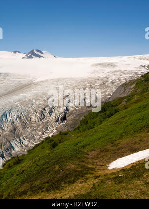 View of Exit Glacier as it leaves the Harding Icefield on a beautiful summer morning, Kenai Fjords National Park, - Stock Photo