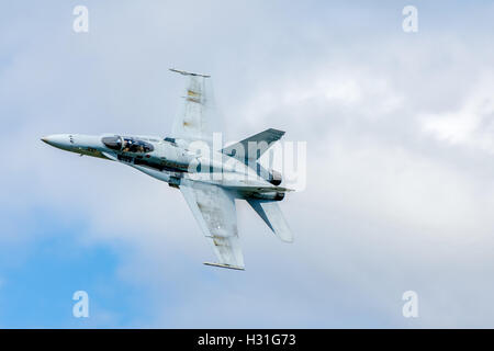 McDonnell Douglas F/A-18 Hornet twin-engine supersonic all-weather carrier-capable multirole combat jet Stock Photo