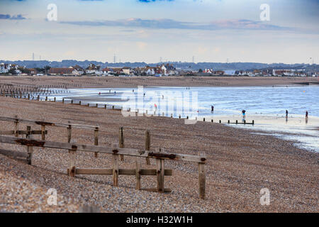 Local Fishermen in distance collecting Lugworm for bait  at low tide on the beach at Pevensey Bay near Eastbourne - Stock Photo