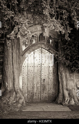 Beautiful wooden church door set between two yew trees in Stow on the wold - Stock Photo