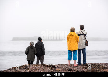 Whale and dolphin watchers looking for marine wildlife at Chanonry Point in the mist, Moray Firth, Scotland, UK - Stock Photo