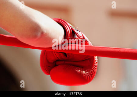 Red Boxing Glove Ring Ropes - Stock Photo