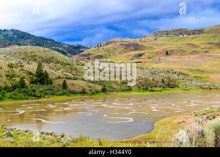 Spotted Lake, also called Ktlil'x, is a saline alkali lake located northwest of Osoyoos in the eastern Similkameen - Stock Photo