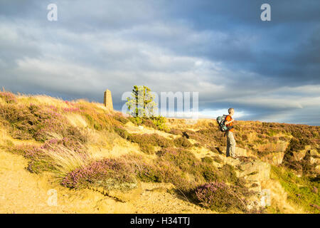 Hiker on the Cleveland Way National Trail at Easby Moor, North York Moors National Park, England, UK, - Stock Photo