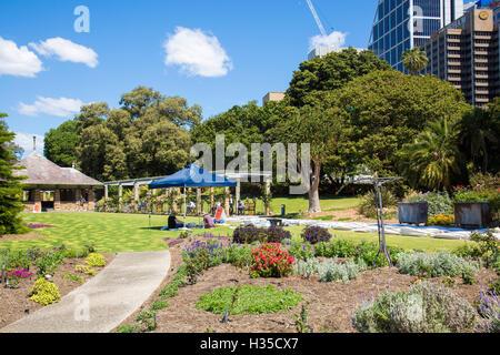 Sydney Royal botanic gardens and Deutsche bank tower  skyscrapers in the CBD,Sydney,Australia