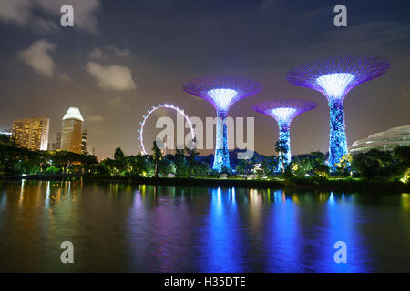 Supertree Grove in the Gardens by the Bay, a futuristic botanical gardens and park, illuminated at night, Marina - Stock Photo