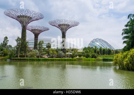 Supertree Grove in the Gardens by the Bay, a futuristic botanical gardens and park, Marina Bay, Singapore - Stock Photo