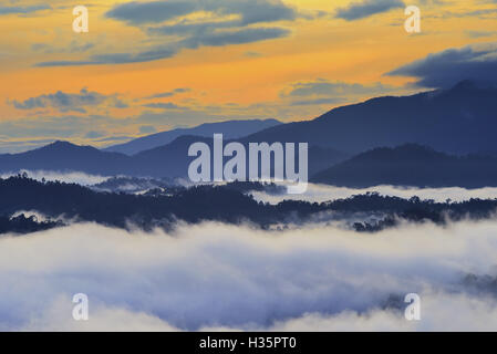 Sunrise over rain forest in Danum Valley Conservation Area in Lahad Datu, Sabah Borneo, Malaysia. - Stock Photo