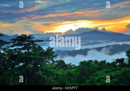 Beautiful sunrise ove rainforest in Danum Valley Conservation Park in Sabah Borneo, Malaysia. - Stock Photo