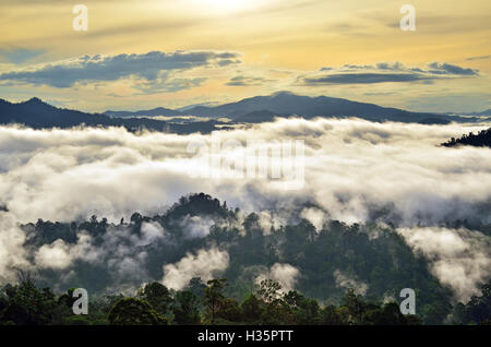 Sunrise with fogs and mist over rain forest in Danum Valley Conservation Area in Lahad Datu, Sabah Borneo, Malaysia. - Stock Photo