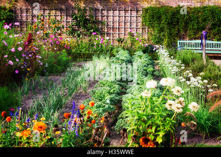 Summer garden with mixed vegetable and flower raised beds UK June