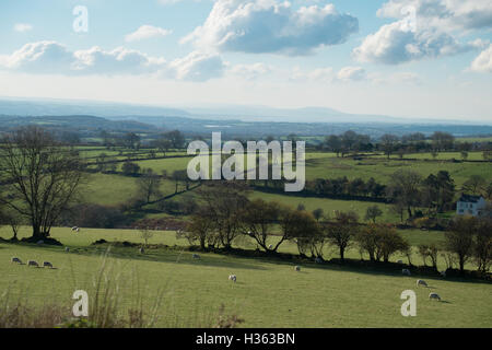View of Loughor Estuary from hills north of Swansea - Stock Photo