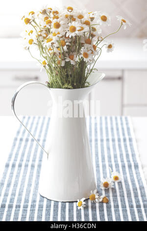 Chamomiles in pitcher - Stock Photo