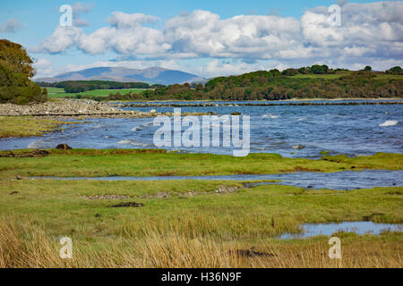 Coast of Wigtown Bay near Garlieston in Wigtownshire, Dumfries and Galloway, Scotland. Hill in distance is Cairnsmore - Stock Photo
