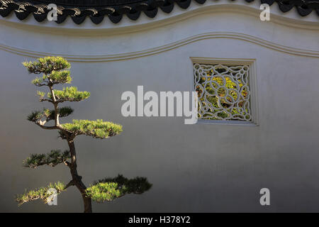 Wall of the Colorful Clouds at the Garden of Flowing Fragrance at Huntington Library and Botanical Garden.San Marino,California, - Stock Photo
