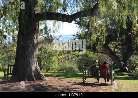 Visitors relaxing at the Botanical Garden of Huntington Library and Botanical Garden.San Marino.California.USA - Stock Photo