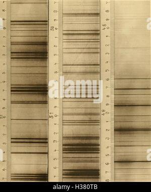 Abhandlungen der Königlichen Akademie der Wissenschaften in Berlin (1888) (1674089 - Stock Photo