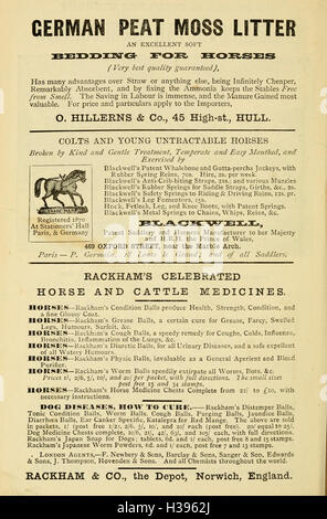 The management and treatment of the horse in the stable, field, and on the road BHL185 - Stock Photo