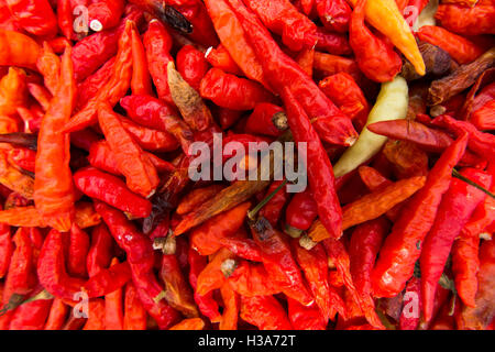 Indonesia, Lombok, Selong Blanak, cuisine, red chilli peppers drying in sun - Stock Photo