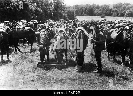 March break of a German cavalry unit in France, 1940 - Stock Photo